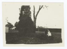 View of What May be the Hampton Institute School Cemetery
