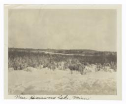 Landscape with Snow, near Basswood Lake, Minnesota