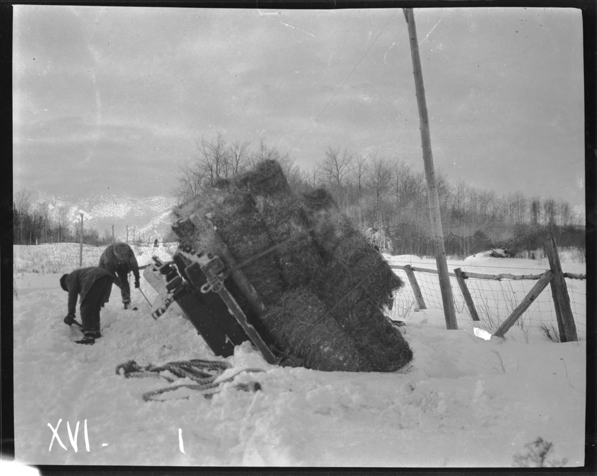 View of Overturned Sled Piled with Hay at the Side of a Road, Minnesota