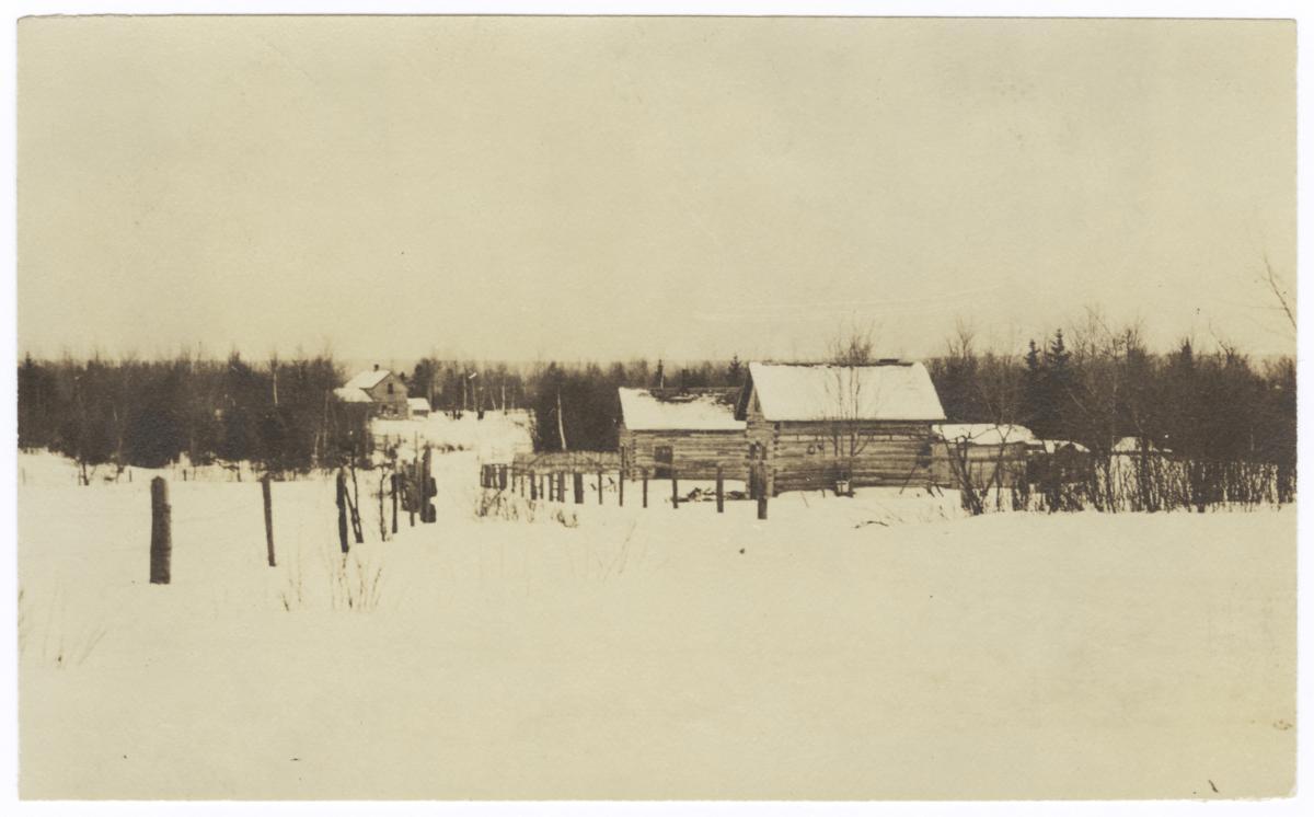 Ojibwa Homes in a Nett Lake Village, Minnesota
