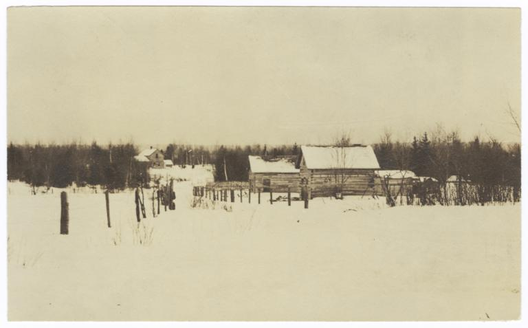 Ojibwa Homes in a Nett Lake Village, Minnesota
