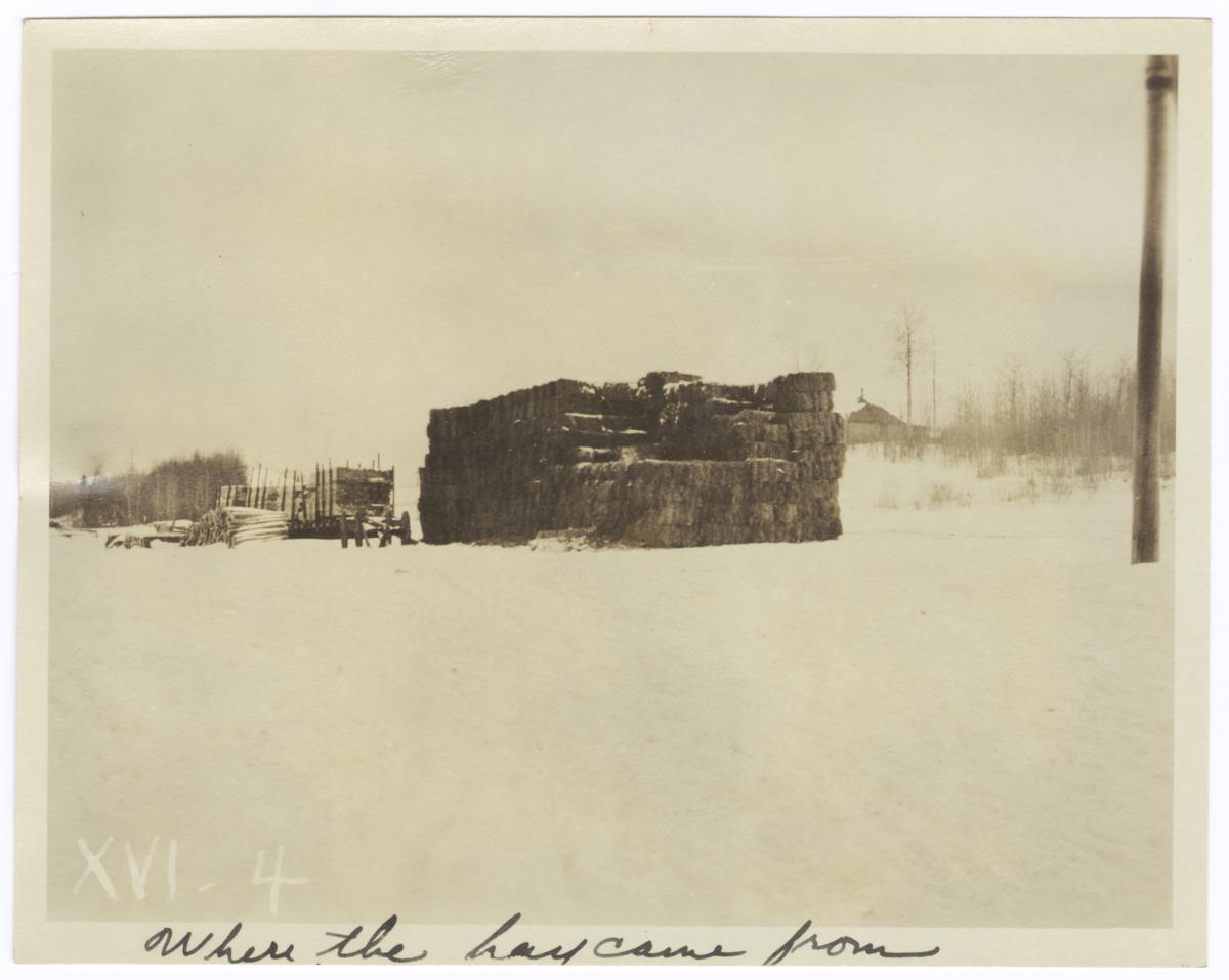 Large Stack of Hay, Minnesota