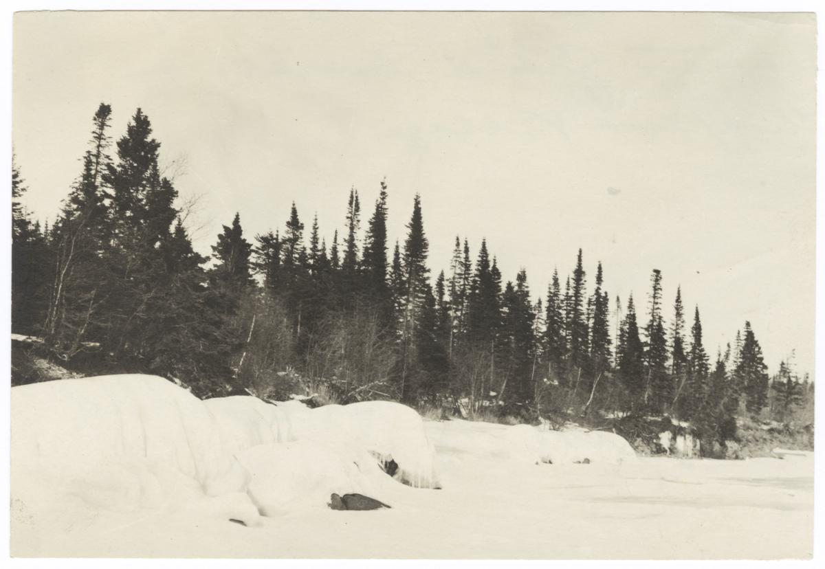 Winter Landscape with Trees, between Grand Marais and Chippewa Village
