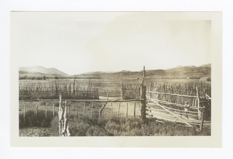 Little Girl on Fence, Reese River Project