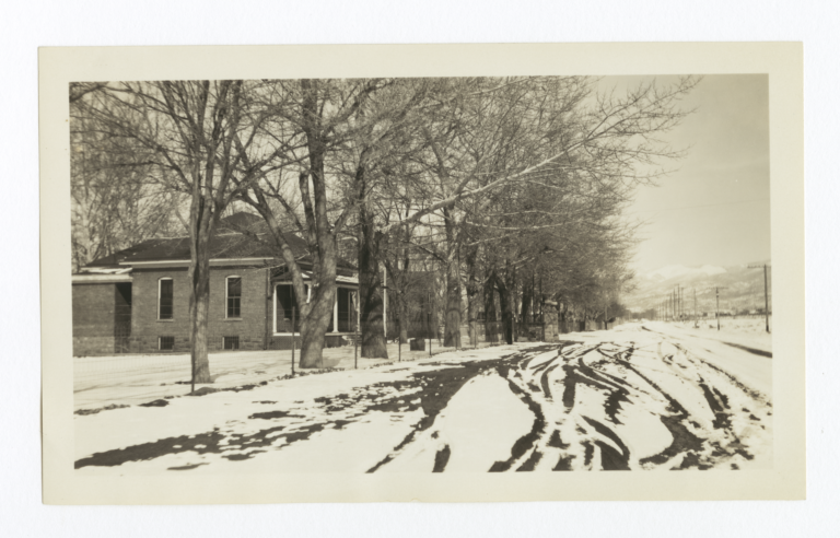 Looking down a Snow Covered Road Lined with Trees and a Building Off to the Left