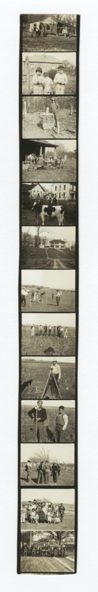 Contact Sheet of 13 Images of People, Buildings, or Farm Animals