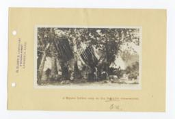 Cayuse Indian Camp on the Umatilla Reservation, Oregon