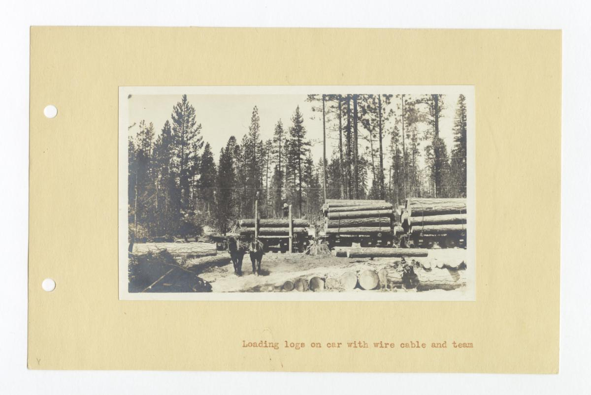 Loading Logs on Car with Wire Cable and Team, Klamath, Oregon