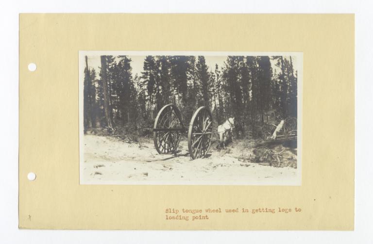 Slip Tongue Logging Wheels, Klamath, Oregon