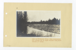 Logs on Williamson River, Oregon