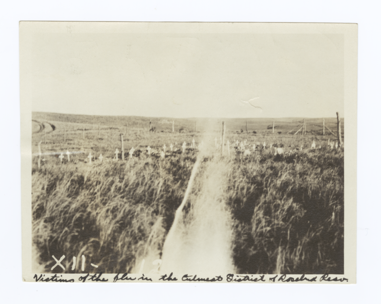 Graves of Victims from Flu in the Cutmeat District, Rosebud Reservation, South Dakota