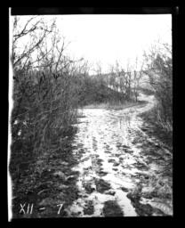 Muddy Road, Rosebud Reservation, South Dakota