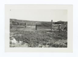 Ranch Corral with People and a Calf off to the Right, Rosebud Reservation, South Dakota
