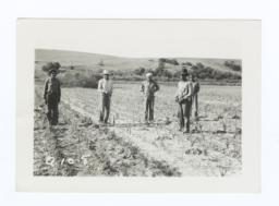Garden Members in the Fields, Rosebud Reservation, South Dakota