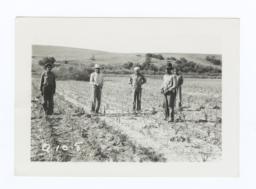 Garden Members in the Fields, Rosebud Reservation, South Dakota