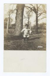 Young Boy near an Oak Tree