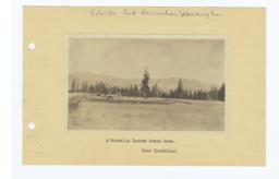 Colville Indian Ranch Home, Washington