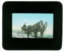 Man on a Carriage Pulled by Two Horses