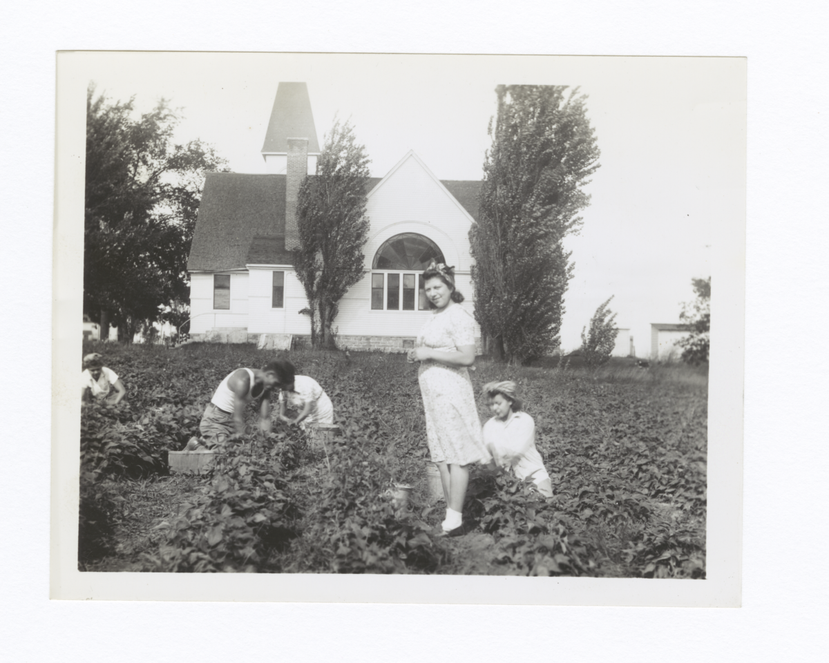 "Woman Standing in the Midst of the Harvesting of the ""Lord's Acre"", Oneida Methodist Mission"