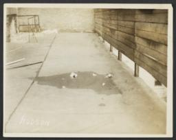Sewers, Sewage and Toilets
