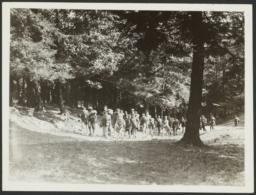 Children Walking at Summer Camp