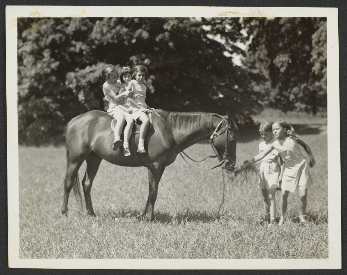 Children with Horse