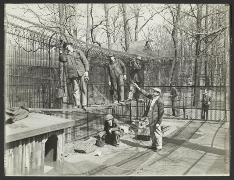 Men Painting Fence at New York Zoological Society