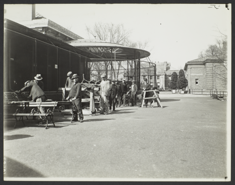 Men near Benches at New York Zoological Society