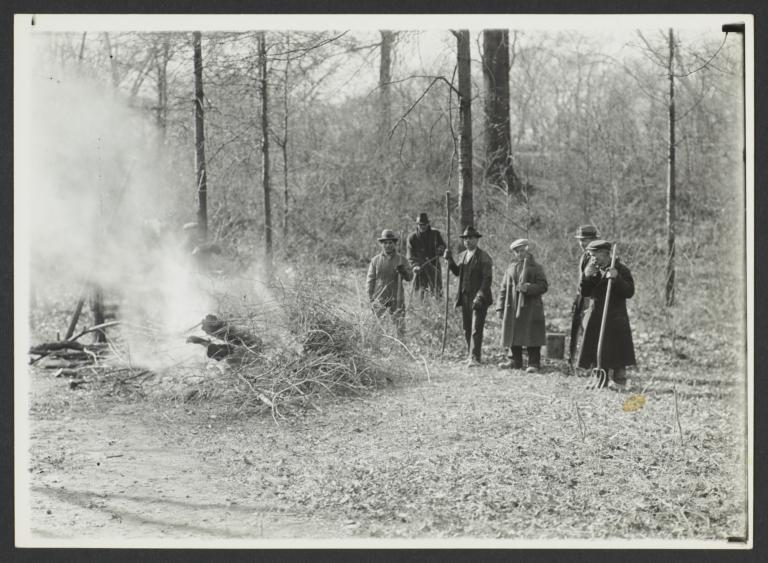 Men Burning Brush