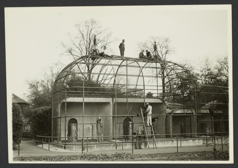 Men On Top of the Eagle and Vulture Aviary