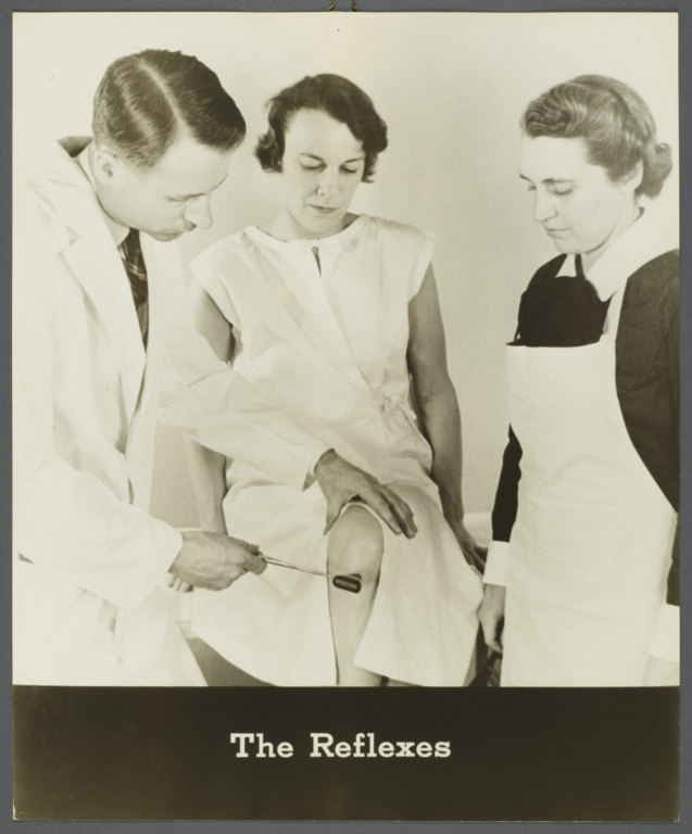 Women's Health Examination Portfolio -- The Reflexes