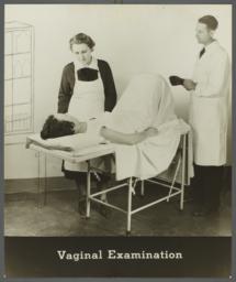 Women's Health Examination Portfolio -- Vaginal Examination
