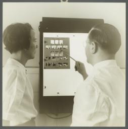Women's Health Examination Portfolio -- Dental X-Rays